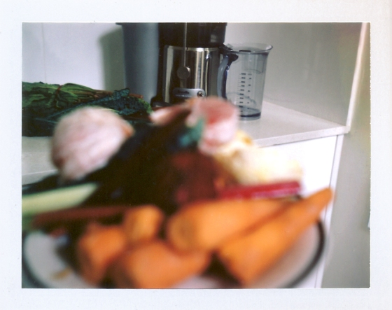 Polaroid of Breville Juicer