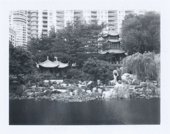 Polaroid of Chinese Garden, Sydney