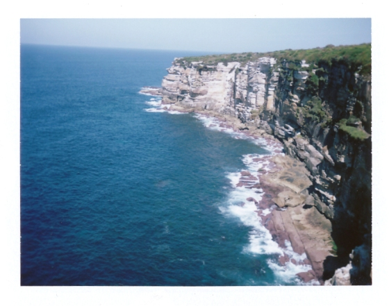 Polaroid of Royal National Park, Australia
