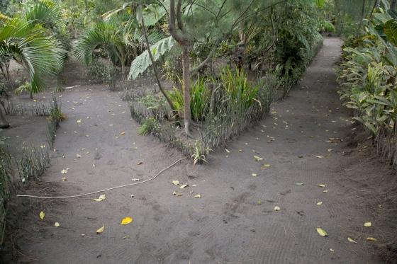 Treetop Lodge on Tanna Island, Vanuatu