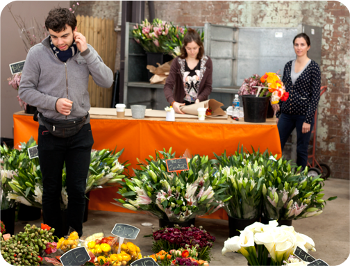 Flowers for sale at the Eveleigh Markets: Sydney, Australia