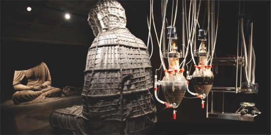 Left: Berlin Buddha, 2007, Zhang Huan- This piece uses 8 tonnes of incense ash - collected from temples around Shanghai - packed into the aluminum mould opposite. Right: Cloaca Professional, 2010, Wim Delvoye - a man made digestive track that poops at 2pm.