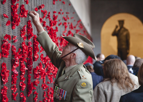 Veteran placing a poppy on the Roll of Honour at the Australian War Memorial on ANZAC Day: Canberra, Australia