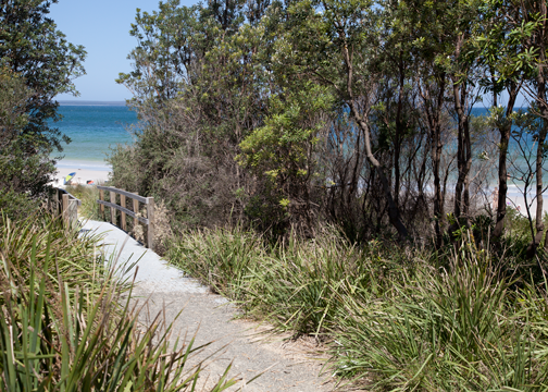 Walkway to Callala Beach: Jervis Bay, Australia