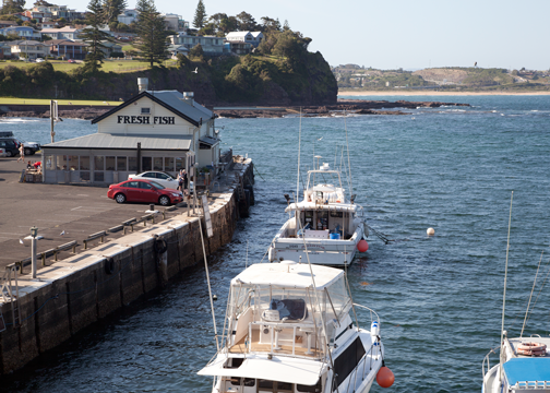 Fishing wharf in Kiama, NSW: Australia