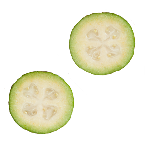 Tropical fruit in Colombia: Feijoa, sliced