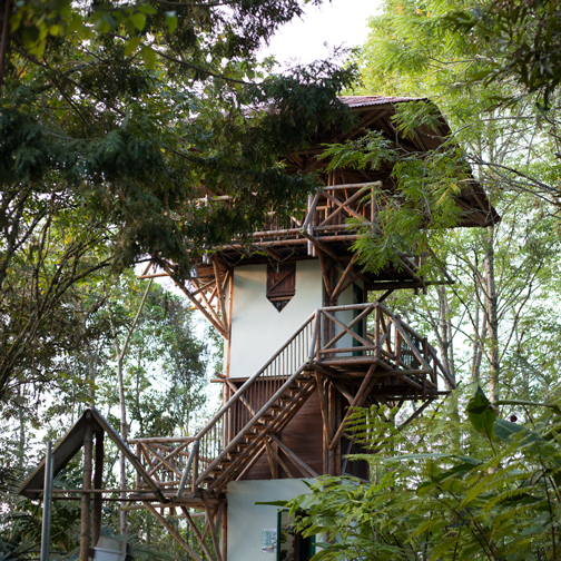 Lookout tower at Ecoparque Regional Alcázares-Arenillo: Manizales, Colombia