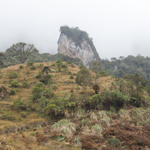 The foggy route to La Gruta and Parque los Nevados: Manizales, Colombia