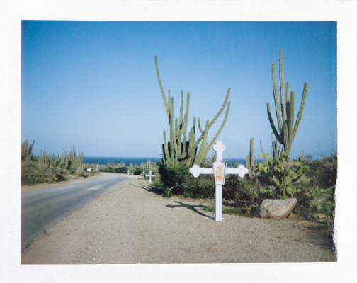 Polaroid of the road leading to the Alto Vista Chapel in Aruba