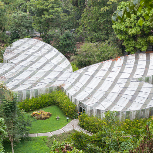 Aerial view of the butterfly garden at the Quindio Botanic Garden: Calarca, Colombia