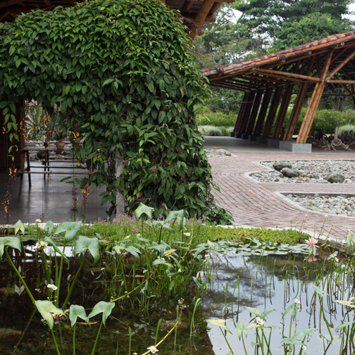 Learning center and cafe at the Quindio Botanic Garden: Calarca, Colombia