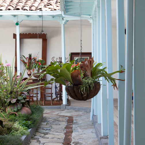 Inner courtyard at Casa Carola B&B in Salamina, Colombia