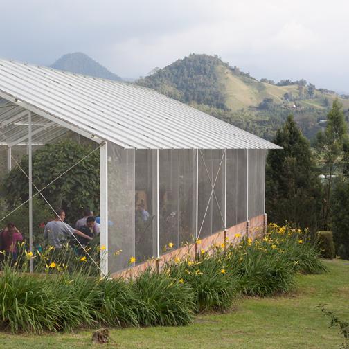 Butterfly garden at Recinto del Pensamiento: Manizales, Colombia