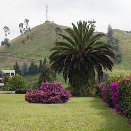Gardens surrounding the offices at Recinto del Pensamiento: Manizales, Colombia