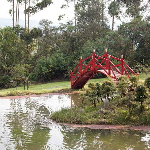Red bridge in the Zen garden at Recinto del Pensamiento: Manizales, Colombia