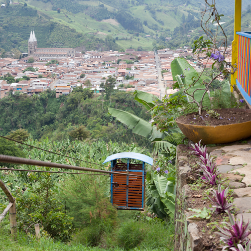 Jardin-View