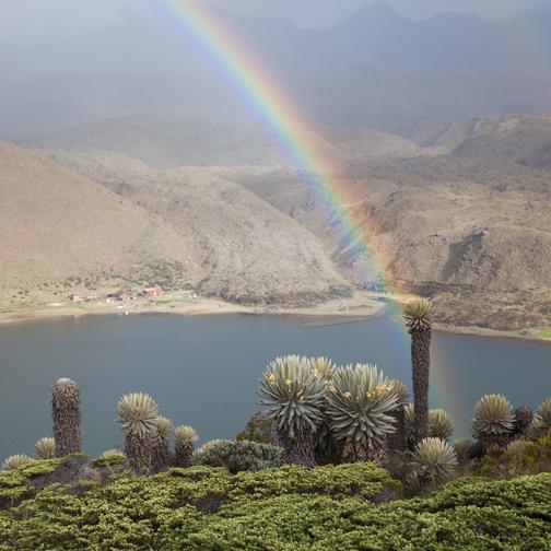 Parque-los-Nevados-Rainbow